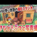 あつ森でもamiiboが対応!amiiboで好きなどうぶつ達を呼びまくって撮影会ができる!?あつ森ダイレクト第3部を解説!【あつまれ どうぶつの森】(くるみ)