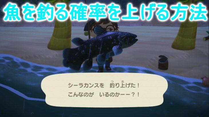 【あつ森】シーラカンスやレアな魚を釣る確率を上げる技!【あつまれどうぶつの森】(みねっと)