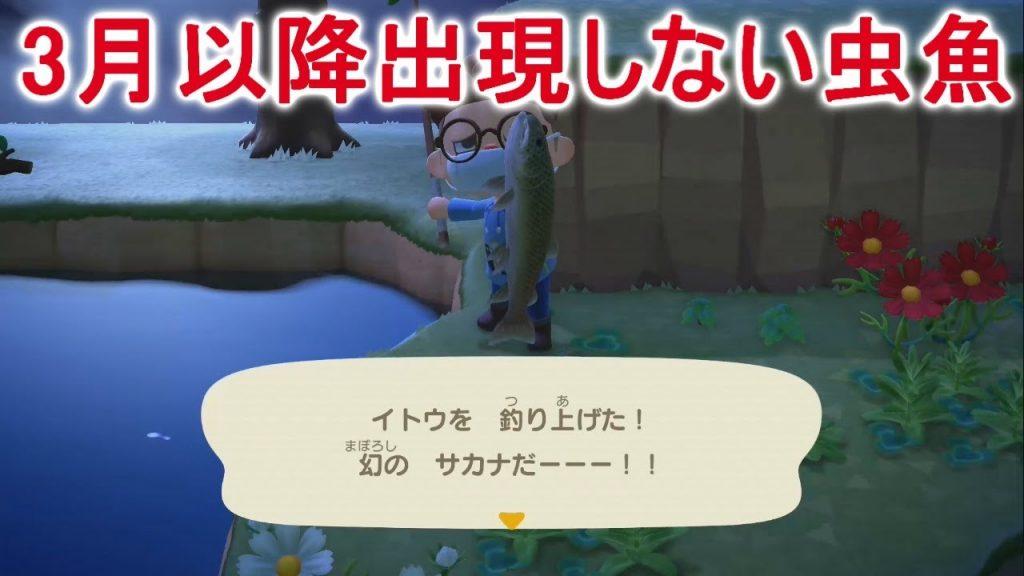 【あつ森】3月中に捕まえないといけない魚と虫をまとめてみた!【あつまれどうぶつの森】(みねっと)