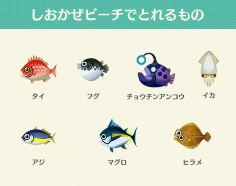 【ポケ森】魚や虫が入れ替わるのはいいけど安い魚は捨てるのめんどくさいから全部動物要求するようにして欲しい…(どうぶつの森まとめ速報)
