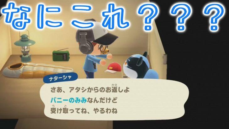【あつ森】ナターシャちゃんのファッションセンスが謎すぎて困惑する???????【あつまれどうぶつの森】(みねっと)