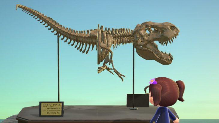 【ぶつ森】Tレックスの化石が揃わない…もうこれでいいかなwww(色んなまとめ)