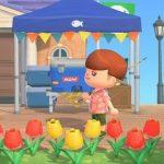 【あつ森】店売りの花の種って月ごとに変わる?通信なしでも全種揃えられるかな…【どうぶつの森 まとめ】(どうぶつの森まとめ速報)