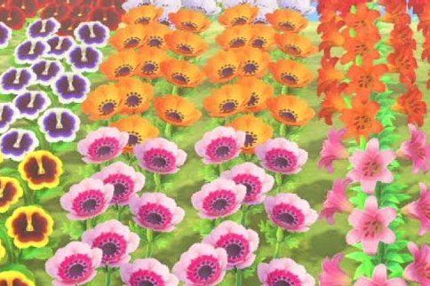 【どうぶつの森】店売りの花の種って月ごとに変わる?(色んなまとめ)