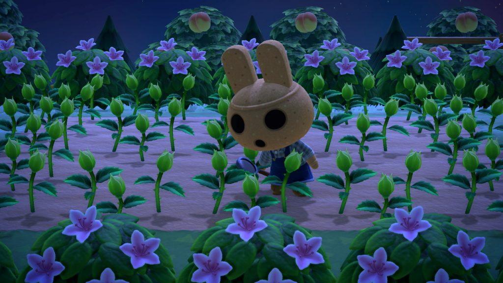 【どうぶつの森】やよいが可愛く撮れた(色んなまとめ)