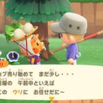 【あつ森】腐ったカブってアリとハエ捕まえたらもう用済み?【どうぶつの森 まとめ】(どうぶつの森まとめ速報)