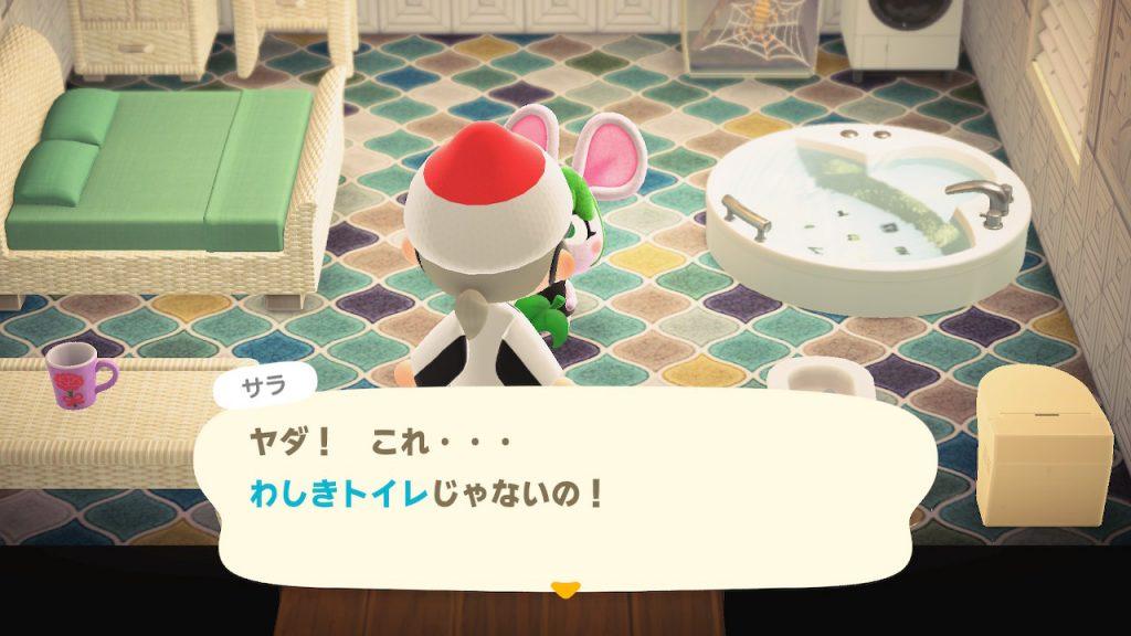 【どうぶつの森】ついにサラちゃんの部屋に三つ目の〇〇を設置できたぞ!(色んなまとめ)
