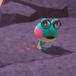 【どうぶつの森】カエルの眼鏡こんな感じなんだ!ええなー(色んなまとめ)