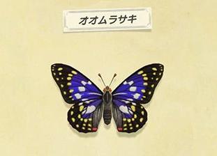【どうぶつの森】五月の新しい魚・虫まとめ(北半球)(色んなまとめ)