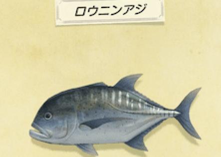 【どうぶつの森】ロウニンアジ釣れねーー!!(色んなまとめ)