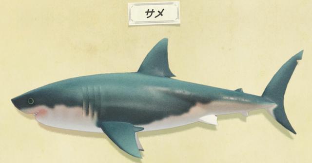 【あつ森】あのデカさのサメ三匹渡してあのサイズの模型ってどういうことなの…【どうぶつの森 まとめ】(どうぶつの森まとめ速報)