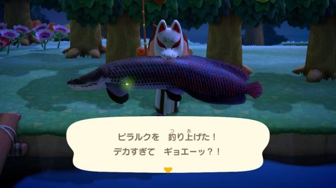 【あつ森】ピラニアがドラドピラクルより釣れない…→ピラクル??(色んなまとめ)