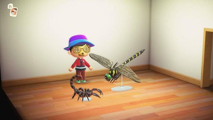 【あつ森】虫の模型は元よりデカくなってるのに魚の模型は元よりしょぼくなる謎(色んなまとめ)