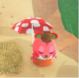 【あつ森】住民に傘プレゼントしたら雨の日使ってくれる?(色んなまとめ)