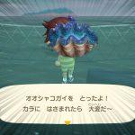 【あつ森】海の幸最速級の逃げ足!?オオシャコガイが速すぎてびびる!?【あつまれどうぶつの森】(みねっと)