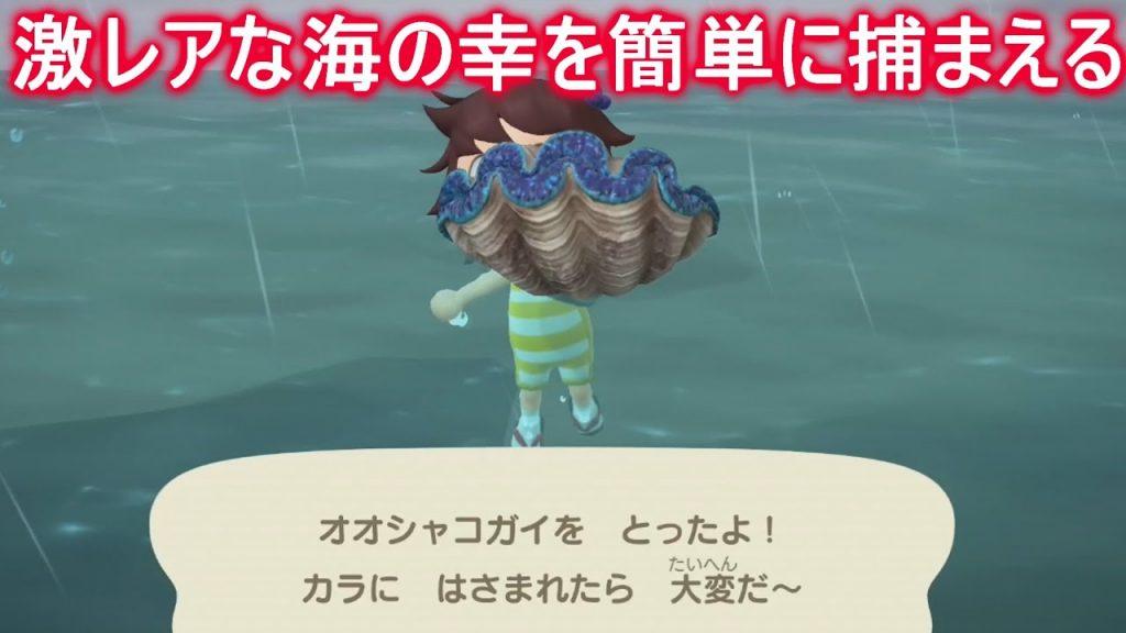【あつ森】必見!捕るのが大変なオオシャコガイを簡単に捕まえる方法!【あつまれどうぶつの森】(みねっと)