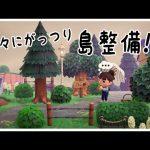 【あつ森】久々にがっつり島整備!タヌキ商店からの道を整備【あつまれどうぶつの森】【島クリエイター】【実況】(くるみ)