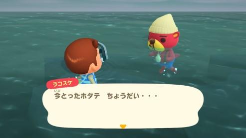 【あつ森】ラコスケ来る条件わからん…あと真珠かレシピで隔たるよねー(色んなまとめ)