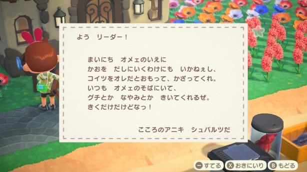 【あつ森】手紙で写真くれた!?と喜んだら、出てきたのは○○www(色んなまとめ)