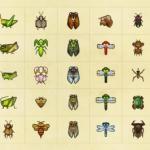 【あつ森】サブキャラから貰った虫や魚って生き物図鑑に登録される?(色んなまとめ)