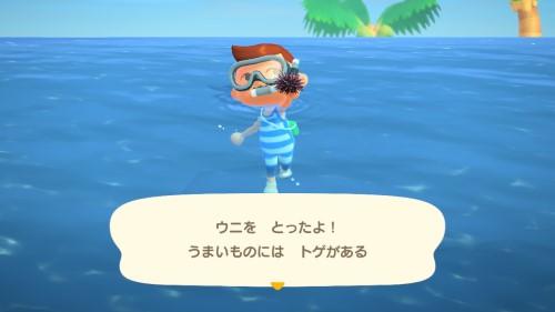 【あつ森】素潜りは稼げるんだけど泳ぐの遅いんだよね→〇〇をマイルで売ってほしい(色んなまとめ)