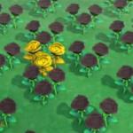 【あつ森】黒バラに金のジョウロで水やったら1本だけしか金にならない…(色んなまとめ)