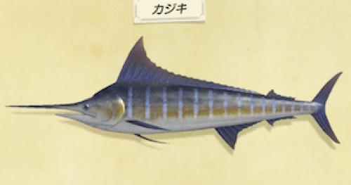 【あつ森】カジキが釣れない…→○○で釣ろう(色んなまとめ)