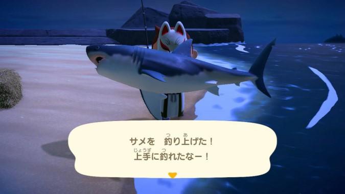 【あつ森】サメは専用釣り竿じゃないと釣れないの?そんなことないけど○○によっては釣りにくいよ(色んなまとめ)