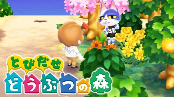 【とび森】半年ほど放置した私の村どうなってるんだろう…w とび森生放送!【とびだせどうぶつの森amiibo+/とび森/animalcrossing】(くるみ)