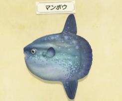 【あつ森】9月末で出現しなくなる虫・魚・海の幸一覧(色んなまとめ)