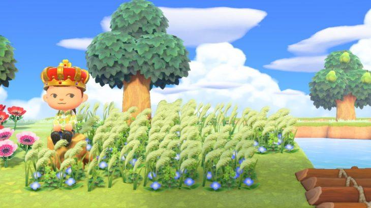 【あつ森】ススキが欲しくて離島から持ち帰ったけど植えてみたら違う雑草…→○○でススキになるよ(色んなまとめ)