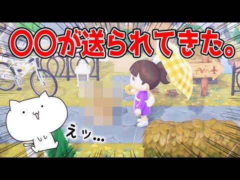 【あつ森】ジンペイのお母さんから〇〇が送られてきた【あつまれどうぶつの森/Animal Crossing】【実況/シュガートース島/くるみ/しゃちく/しゃちくるみ/冬アプデ/アップデート】(くるみ)