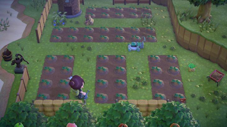 【あつ森】かぼちゃ植えてみたけど可愛いなー。他の野菜も増えてほしい。(色んなまとめ)