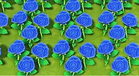【あつ森】青バラが意外なとこから咲いた!!(色んなまとめ)
