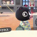 【あつ森】間違って初期からの住民の引っ越しをOKしちゃって後悔…Amiibo買お…(色んなまとめ)