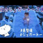 【あつ森】夜のシュガートース島を整備!*映える島クリエイト【あつまれどうぶつの森/Animal Crossing/島クリエイター】【実況/アップデート/アプデ/くるみ/しゃちく/しゃちくるみ】