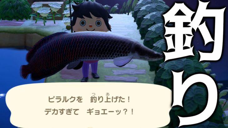 【あつ森】魚のまきエサを100個使ってレア魚を大量に釣り上げる!【あつまれどうぶつの森】