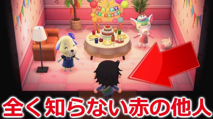 【あつ森】誕生日に全く知らない赤の他人が祝いに来たらどうなるのか!?【あつまれどうぶつの森】
