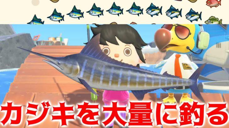 【あつ森】島でカジキが釣れない人必見!離島で大量に釣ってみた!【あつまれどうぶつの森】