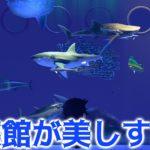【あつ森】博物館の魚コーナーを完全コンプリートしたら水族館が完成した!【あつまれどうぶつの森】