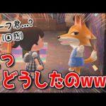 【あつ森】チーフくんの趣味が意外過ぎて笑ったwww【あつまれどうぶつの森/Animal Crossing】【実況/くるみ/しゃちく/しゃちくるみ】