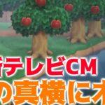 【あつ森】最新のテレビCMが公開!川の真横に木を植えれる可能性が浮上!?【あつまれどうぶつの森】