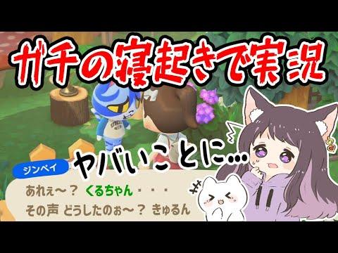 【あつ森】ガチの寝起きで実況したら色々ヤバすぎたwww【あつまれどうぶつの森/Animal Crossing】【実況/くるみ/しゃちく/しゃちくるみ】