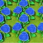【あつ森】感動!3月6日スタートでとうとう青バラ咲いた【どうぶつの森 まとめ】