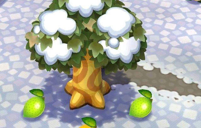 【ポケ森】おいしいフルーツを出すと買い占めて自分のバザーで高値で転売するフレがムカつく【どうぶつの森 まとめ】