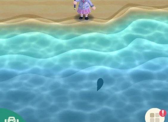 【ポケ森】もしかして、クラゲもゴライアスガエル並みに出てこないの?【どうぶつの森 まとめ】